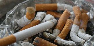 Cytyzyna - skutecznym środkiem do walki z nikotyną