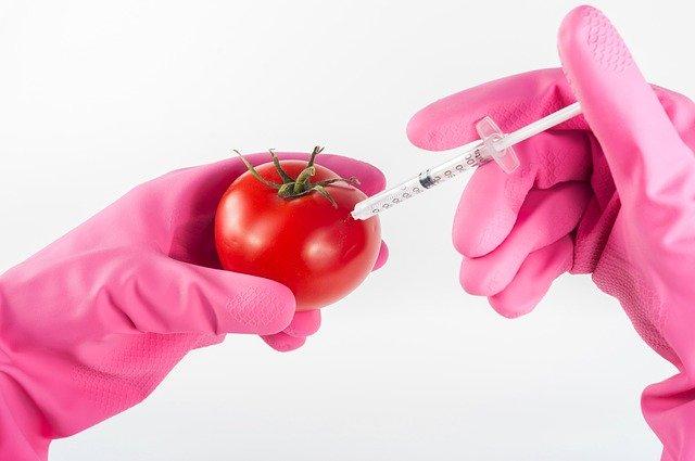 biotechnlogia